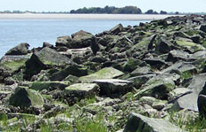 Rocks and Jetties